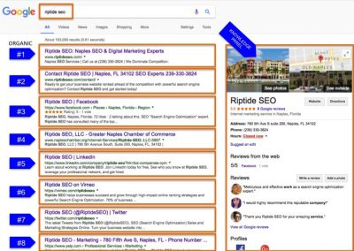 Search Results for Riptide SEO