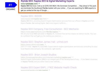 Search Results for How to Get SEO in Naples FL