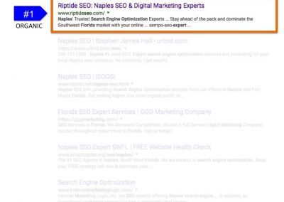 Search Results for Naples FL Search Engine Optimization Expert