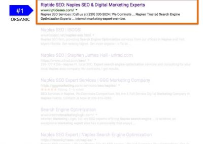 Search Results for Search Engine Optimization Expert Naples