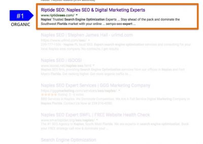 Search Results for Search Engine Optimization Expert Naples FL