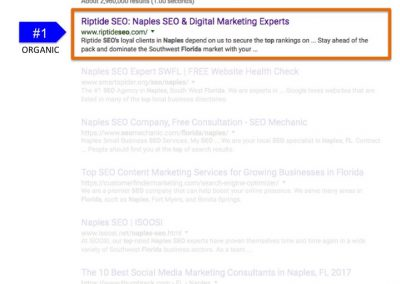 Search Results for Top SEO Naples FL